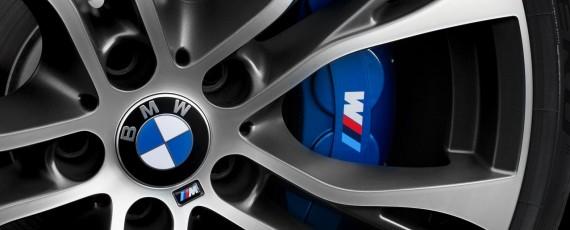 BMW X6 M Performance (09)