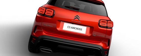 Citroen C5 Aircross (03)