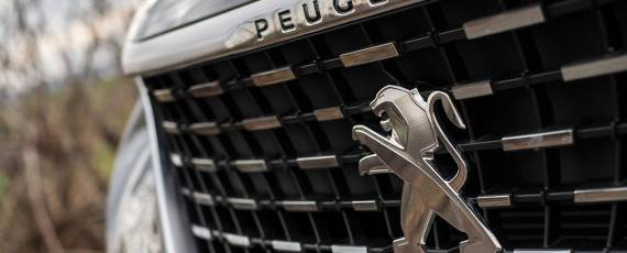 Test Peugeot 5008 GT (13)